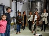 Weinverkostung in Göttlesbrunn